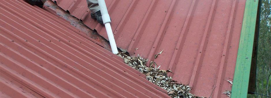 Gutter Cover Leaf Protection Brisbane