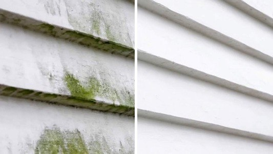 Mould Removal Brisbane Gold Coast Home Residential Exterior Cleaning Service