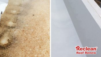 Roof Rust Stain Removal Brisbane Gold Coast Before After Cleaning
